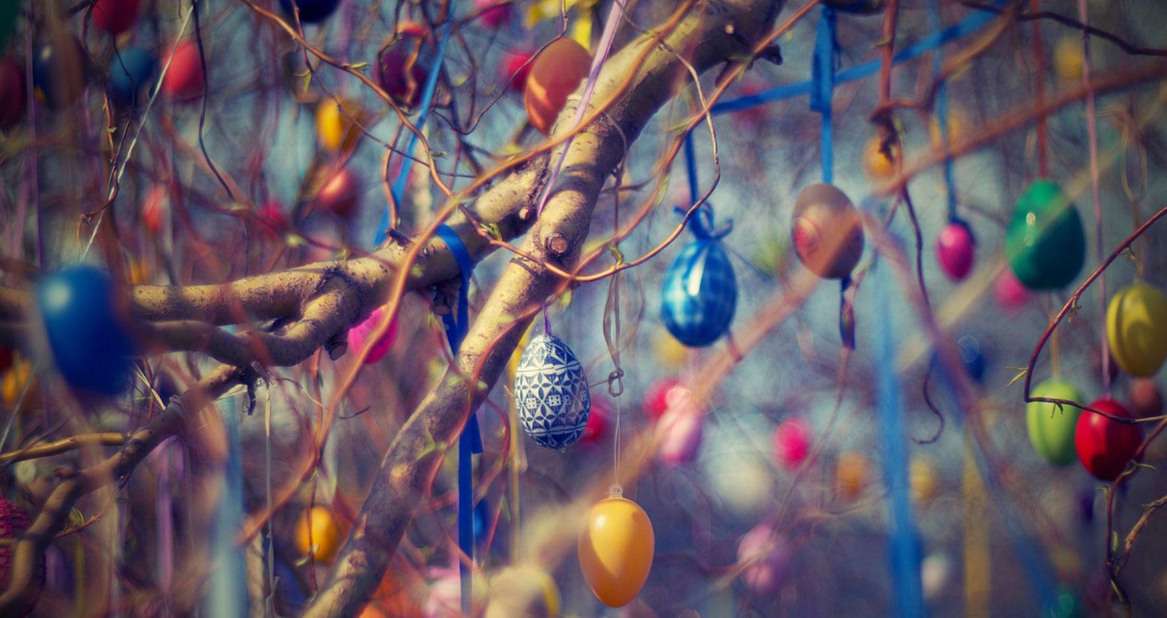 The Easter Egg Hunt by Roger Turner at Spillwords.com