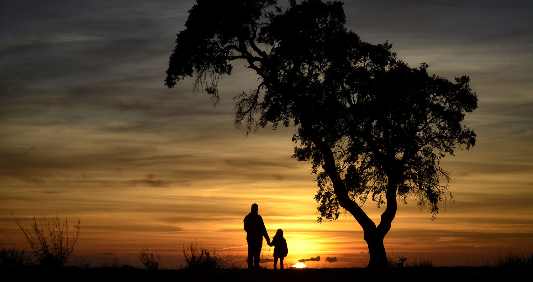 TO THE FATHERS OF ALL AND EVERY by Vern Fein at Spillwords.com