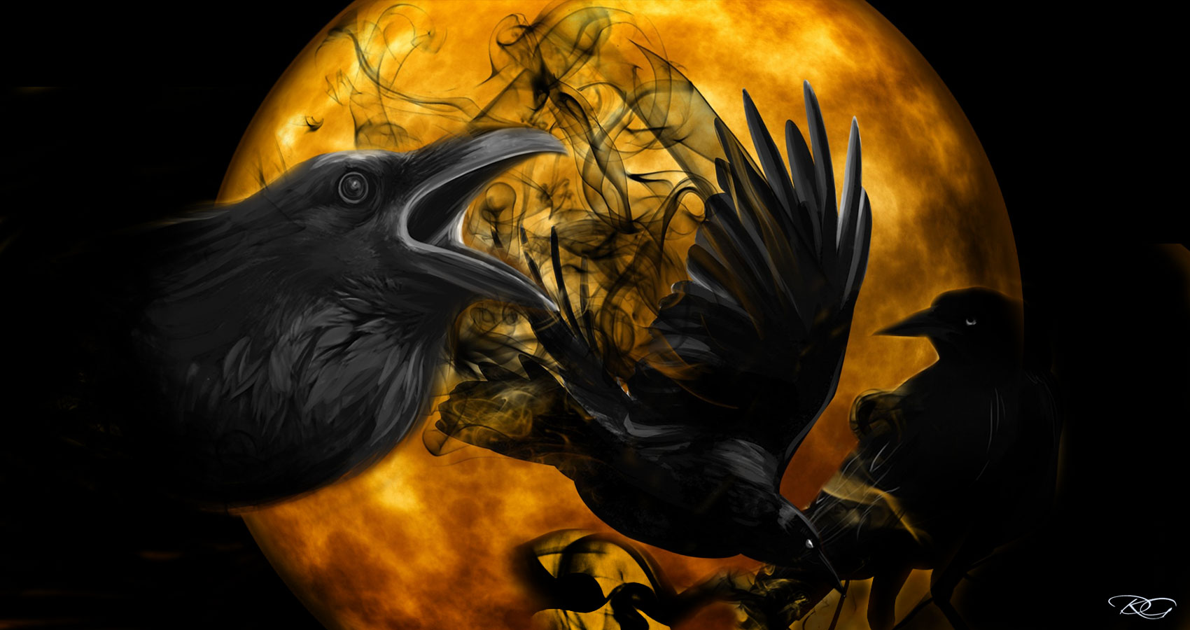 War Of The Crows written by TM Arko at Spillwords.com