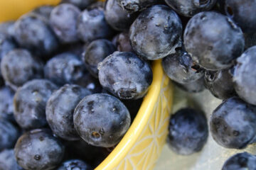 A Bowl of Blueberries written by Ipsita Paul at Spillwords.com