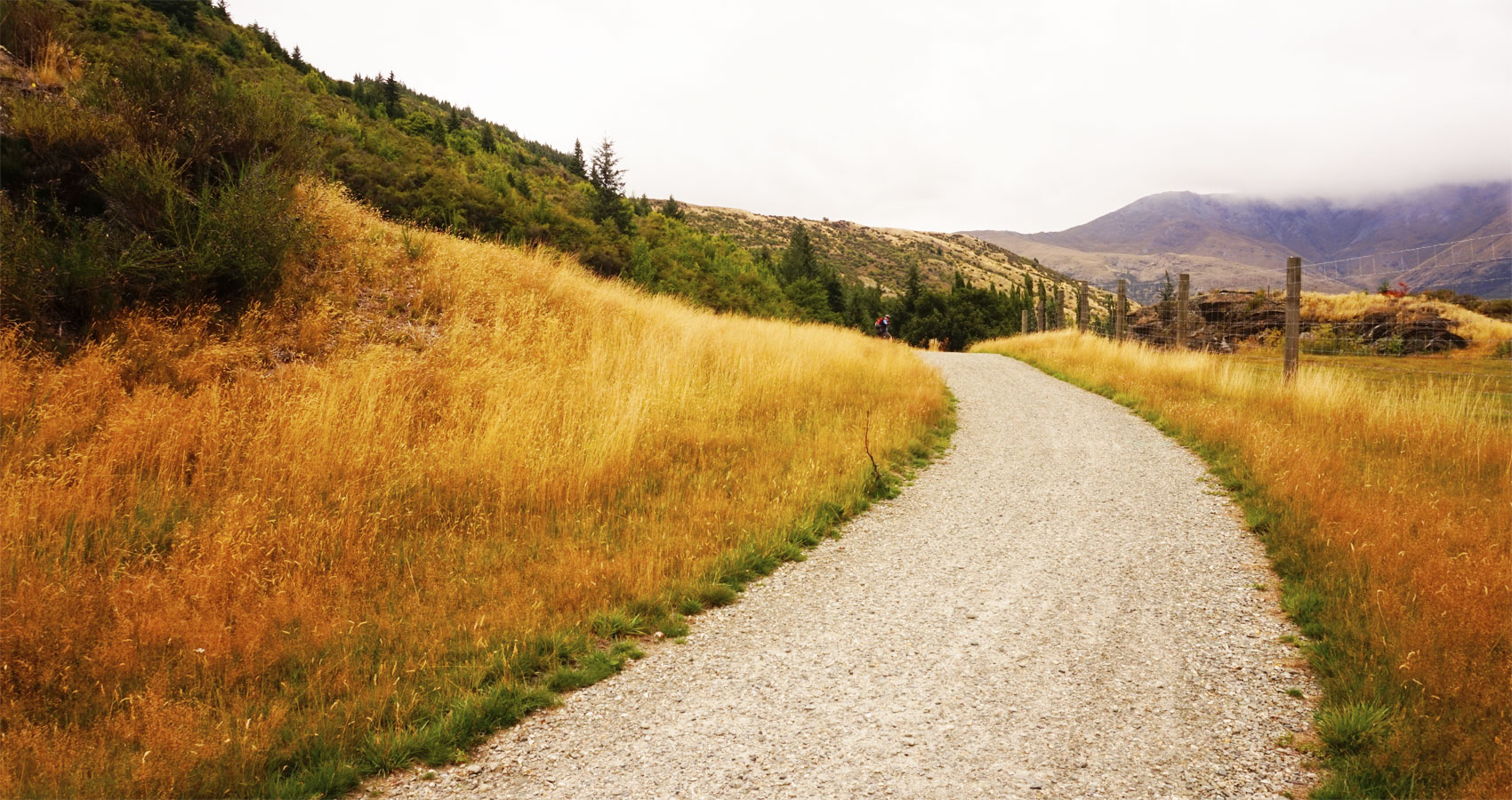 Gravel Roads And Fields of Grass written by TM Arko at Spillwords.com