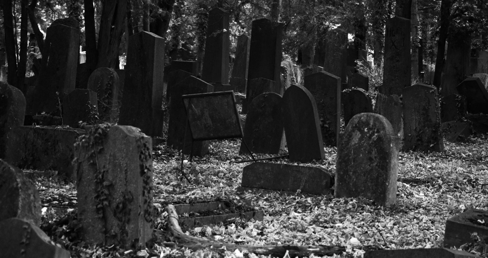 Grave, a poem written by Jack Wolfe Frost at Spillwords.com
