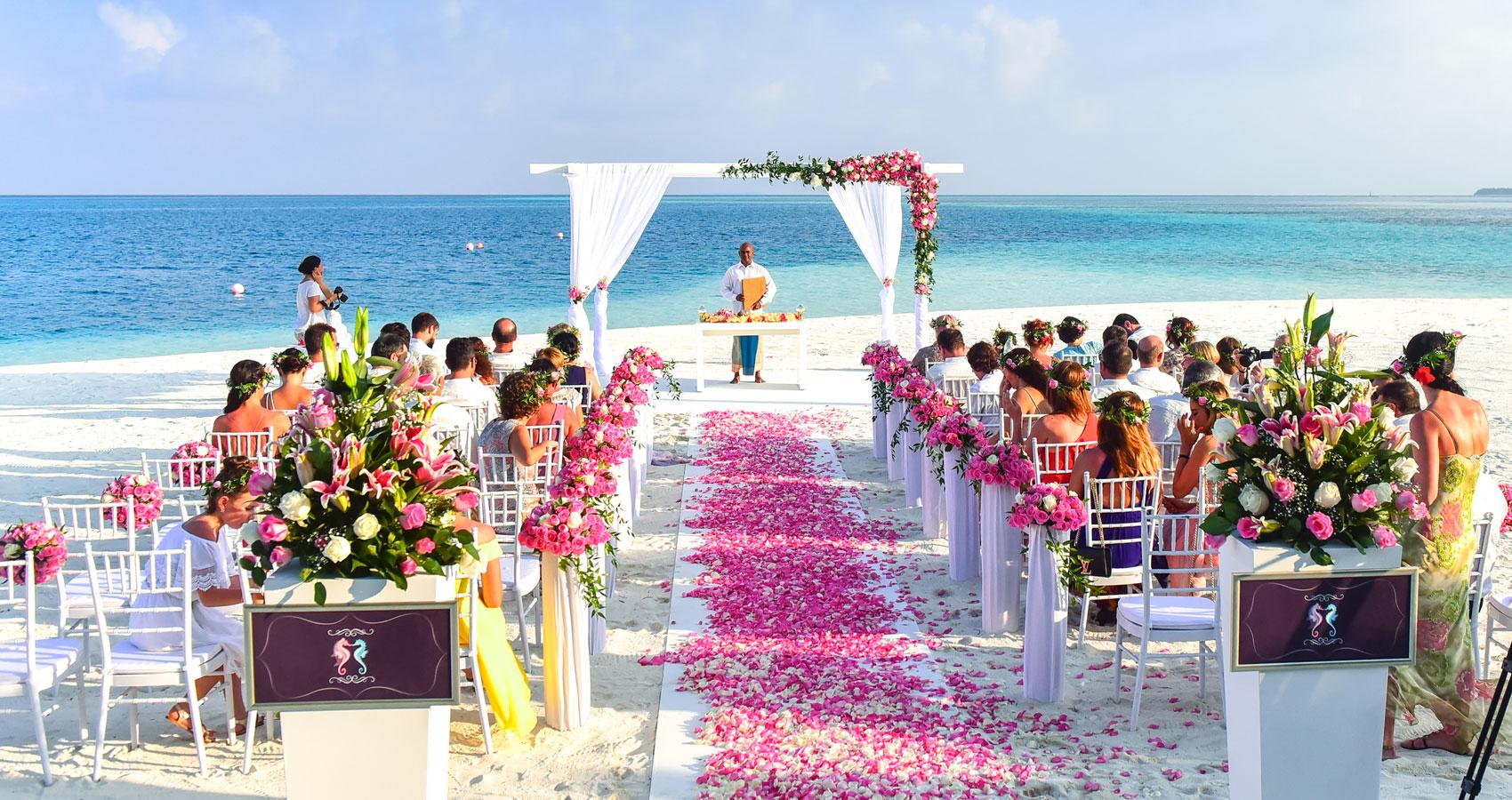 THE Wedding, a haiku written by Rich at Spillwords.com