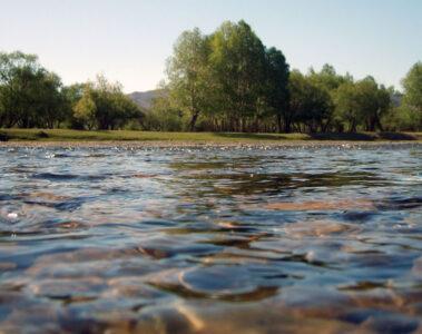 A Sentiment Of Soil written by Ruma Hazarika at Spillwords.com