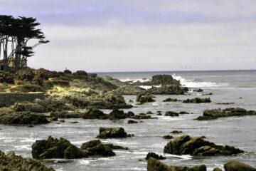 Monterey, a poem written by TM Arko at Spillwords.com