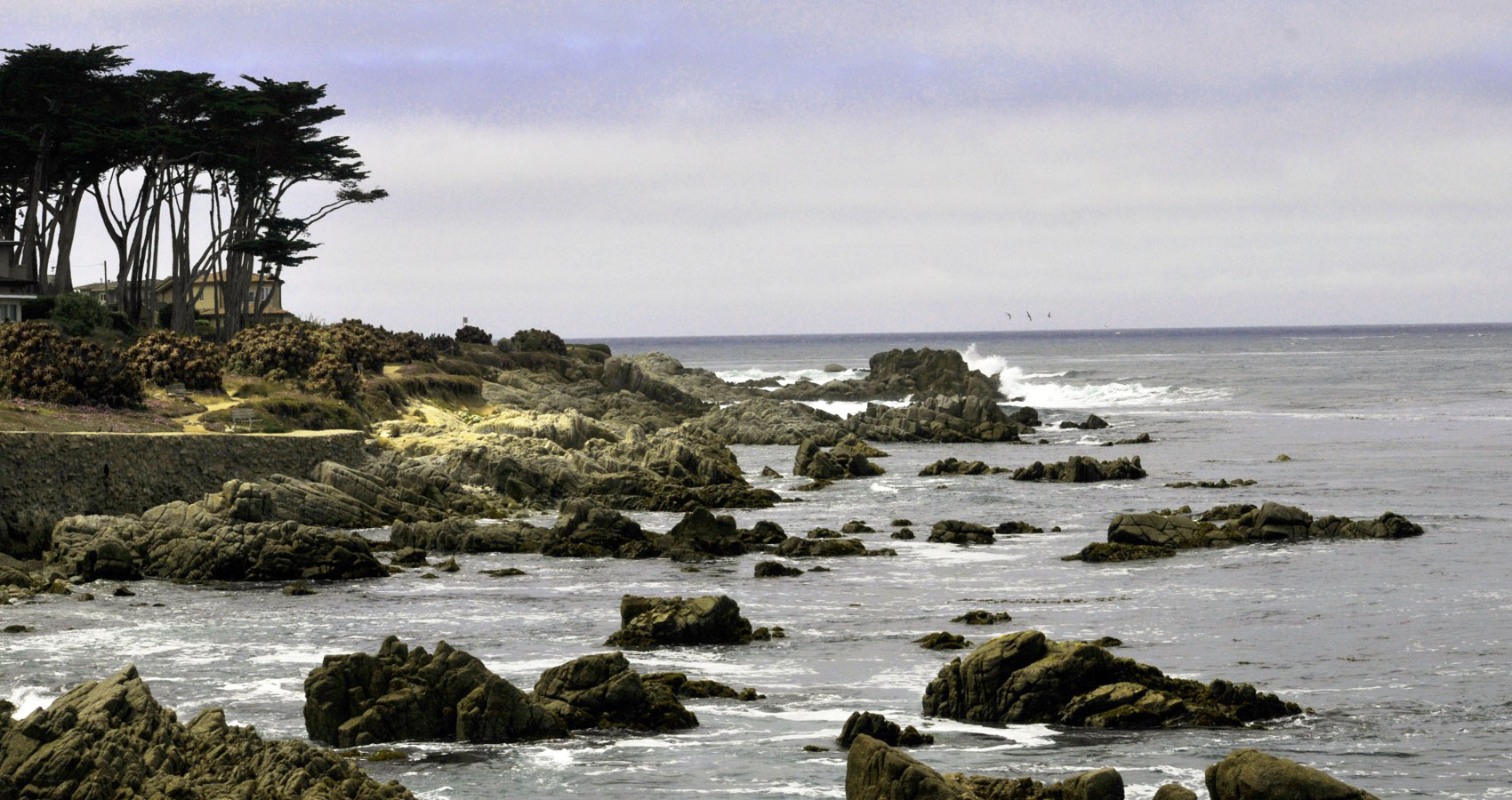Monterey, a poem written by TM Arko at Spillwords.com