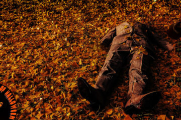 Scarecrow Has Fallen written by TM Arko at Spillwords.com