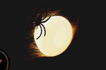 The Spider, a micropoem written by Rich at Spillwords.com
