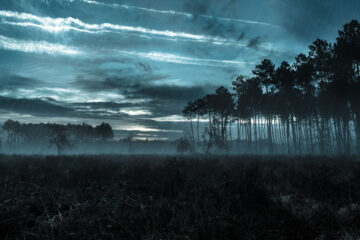 Restless Wind by Ann Christine Tabaka at Spillwords.com