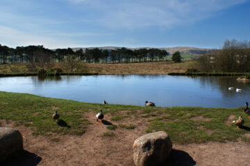 Tebay Services Southbound by Matthew Roy Davey at Spillwords.com