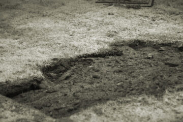 When The Dead Stirred From The Graves, by Dr Santosh Bakaya at Spillwords.com