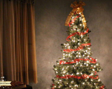 A Green Christmas written by Ivanka Fear at Spillwords.com