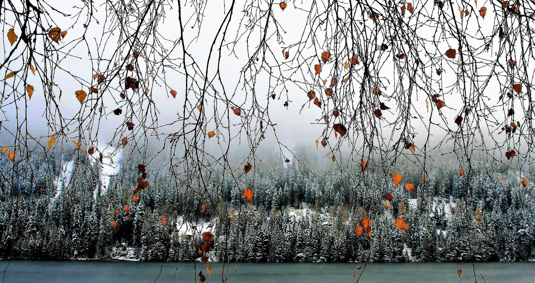 Winter's Dawn, written by Anne G at Spillwords.com