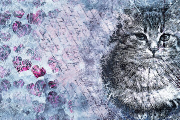 A Cat With Two Hearts by Anshika Sharma at Spillwords.com