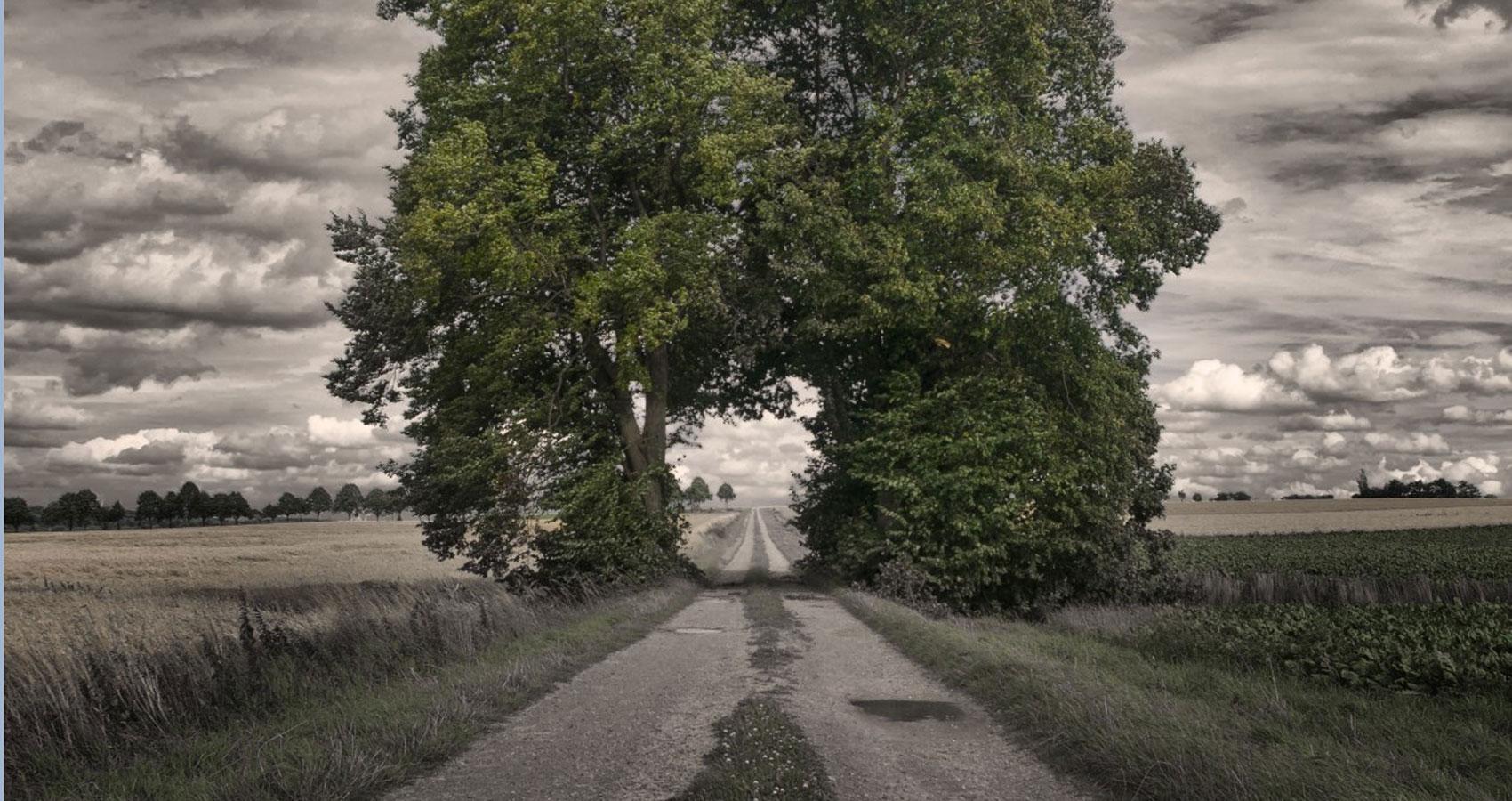 The Long Road, written by Fallen Engel at Spillwords.com