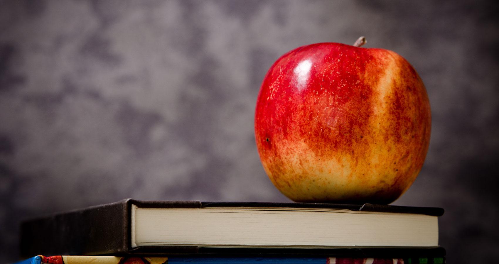 The School Teacher written by Robin McNamara at Spillwords.com