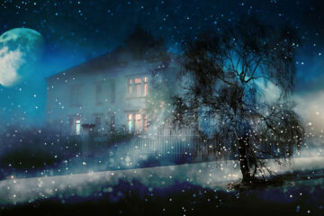 Winter, A Wondering Spirit, written by LadyLily at Spillwords.com
