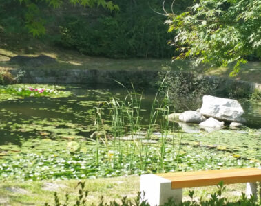Garden, prose written by Brenda Gvozdanovic at Spillwords.com