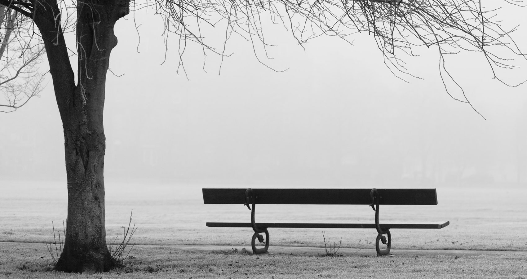 Park Bench, written by Eoghan Lyng at Spillwords.com