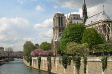 PARIS IN A VASE, a poem written by Bene Kusendila at Spillwords.com