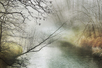 Spring Shall Overcome, a poem written by Lee Dunn at Spillwords.com