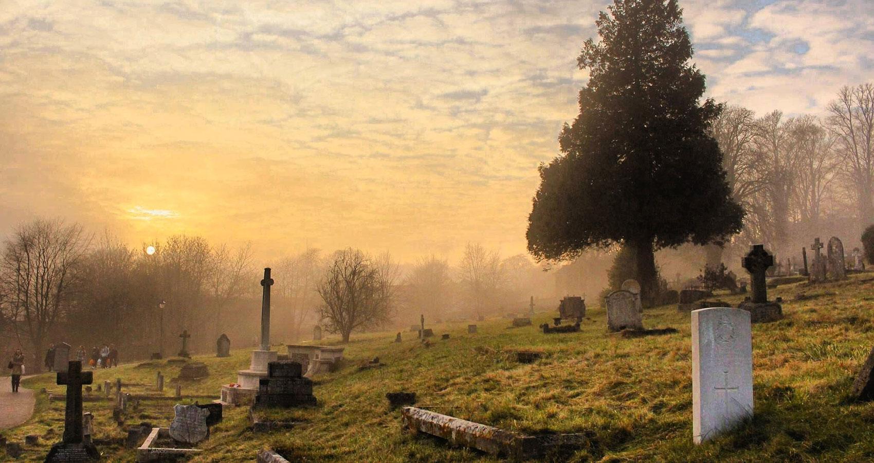 The Graveyard, a poem written by Julian Lee at Spillwords.com