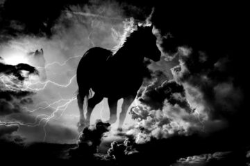 Thunder, written by Doug Stanfield (Hemmingplay) at Spillwords.com