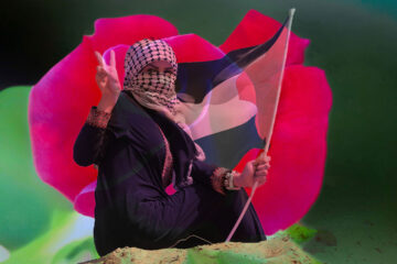 A Rose For Gaza, a poem written by Lynn White at Spillwords.com