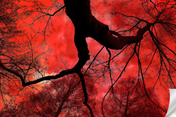 Blood Song, a poem by Godfrey Holy and Tanya Rakh at Spillwords.com