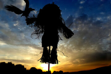 Crucify The Scarecrow, written by Terry Miller at Spillwords.com