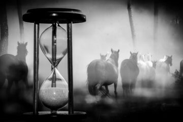 If We Had More Time, a poem by Doug Stanfield at Spillwords.com