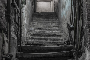 THE SHADOW STEALER, written by Dilip Mohapatra at Spillwords.com