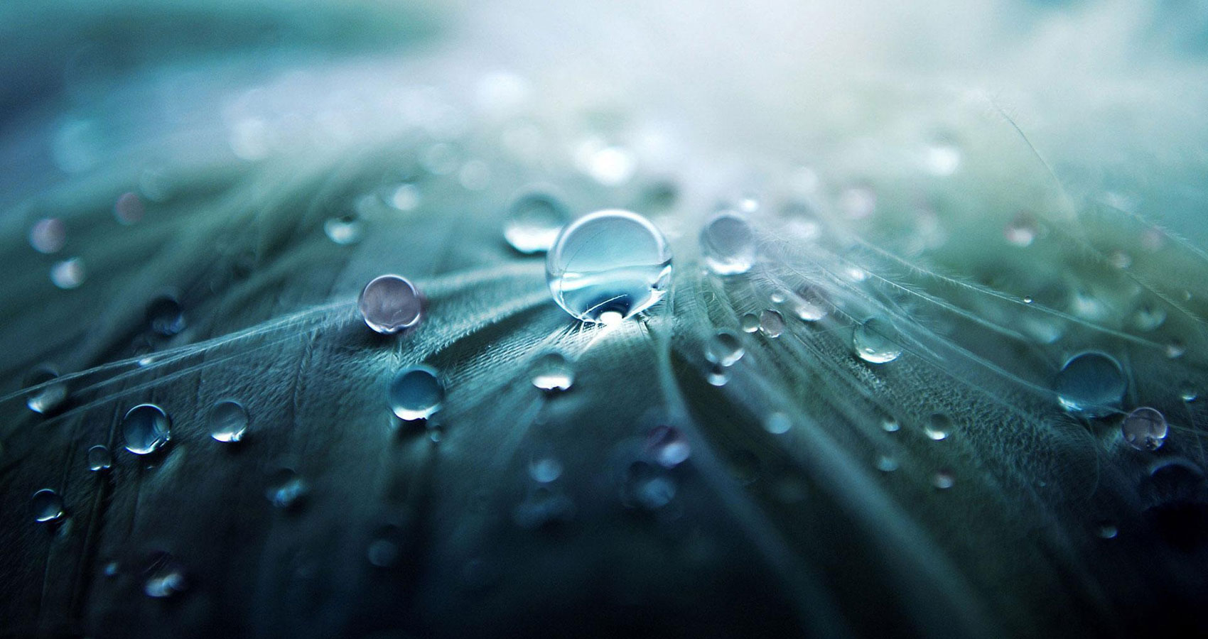 There Will Be Soft Rains, a poem by Sara Teasdale at Spillwords.com