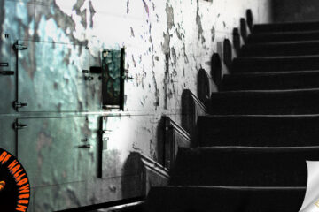 Bodies In The Basement, short story by M. Taggart at Spillwords.com