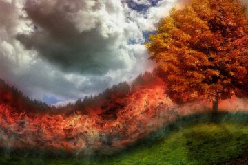 Firestorm, poetry written by A. Peetz at Spillwords.com
