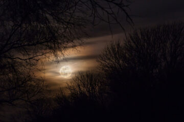 Luna di Giorno, a poem written by Francesco Abate at Spillwords.com