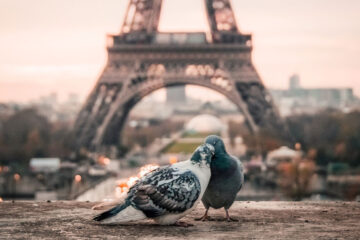 This Is Paris, a poem written by Barbara Deraoui at Spillwords.com