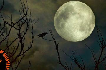 Bad Moon Rising, a short story written by Jim Bartlett at Spillwords.com
