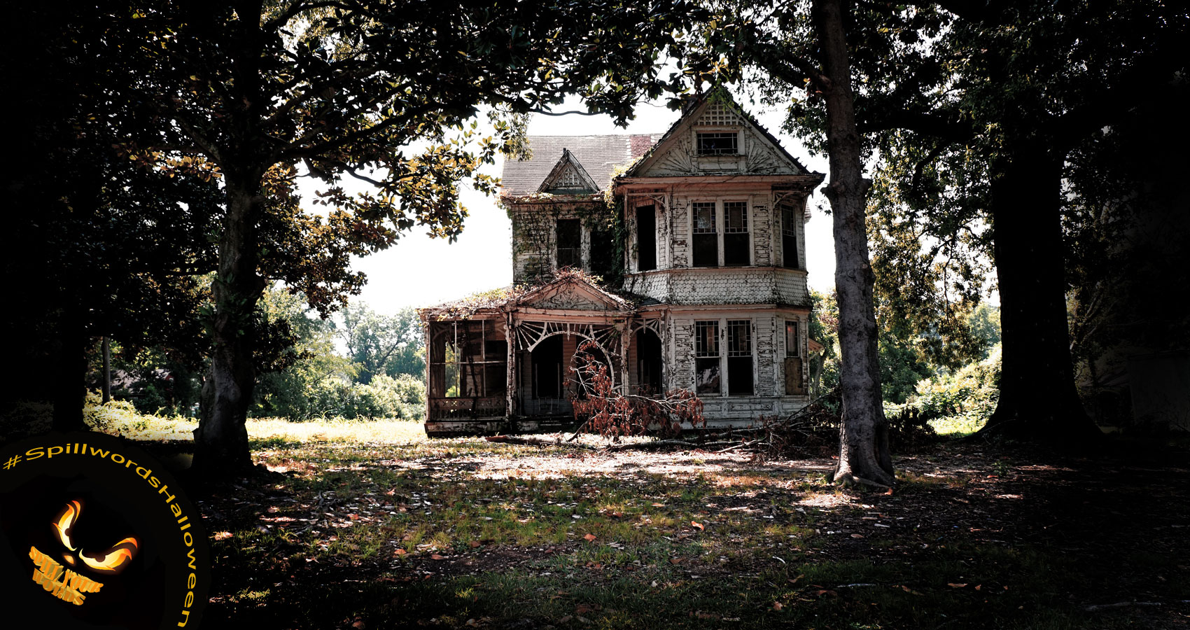 The Mystery House on My Street, by Linda S. Williams at Spillwords.com