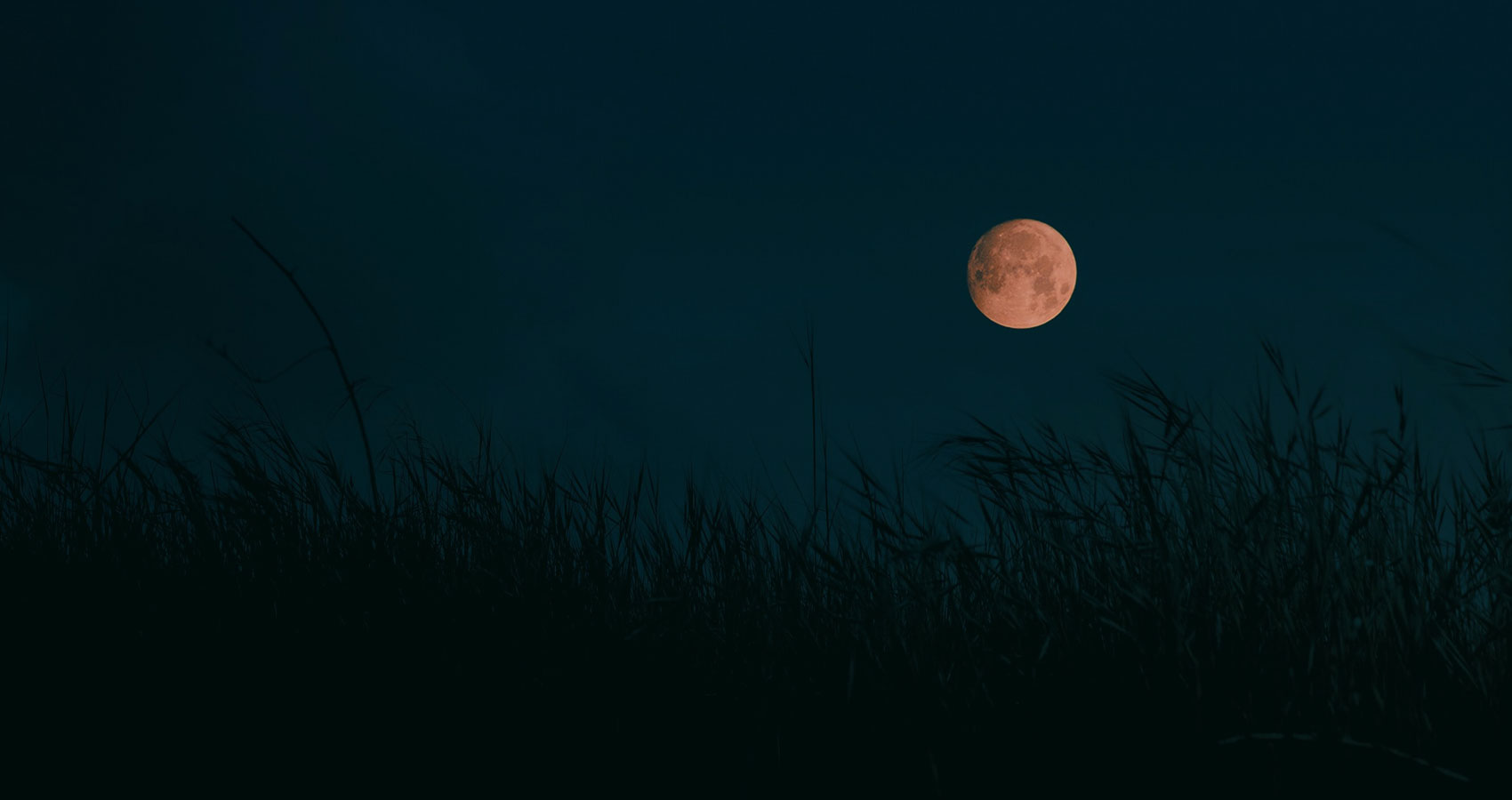 The Harvest Moon by Henry Wadsworth Longfellow at Spillwords.com