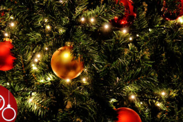 A Christmas Tree Wish by Franci Eugenia Hoffman at Spillwords.com