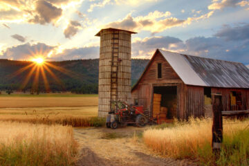 Country Likes Hit, poetry written by Marius Surleac at Spillwords.com