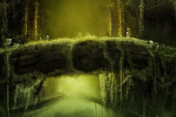 Language of Woods, poetry written by Susi Bocks at Spillwords.com
