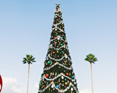 Musing About Island Christmas of Years Past, poetry by Sheila Henry at Spillwords.com