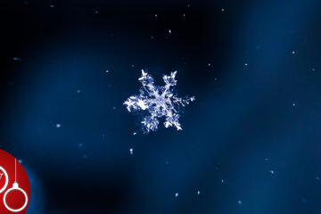 The Little Snowflake, a poem by Francesco Abate at Spillwords.com