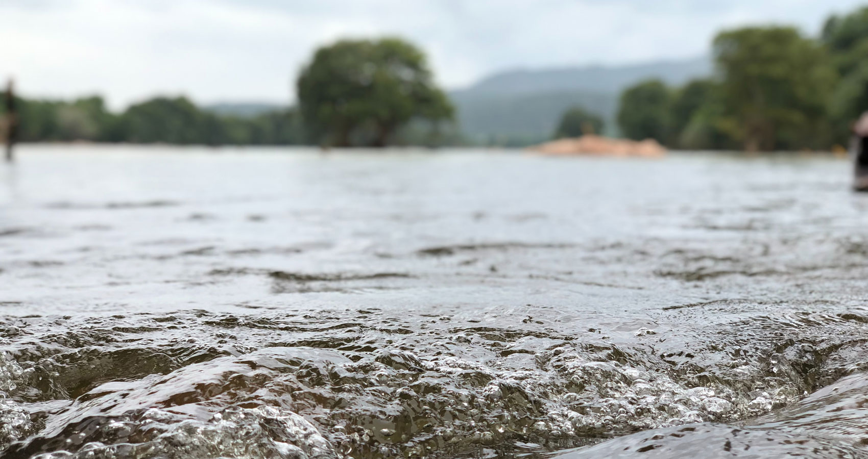 After The Floods, poetry by Dr. MOLLY JOSEPH at Spillwords.com