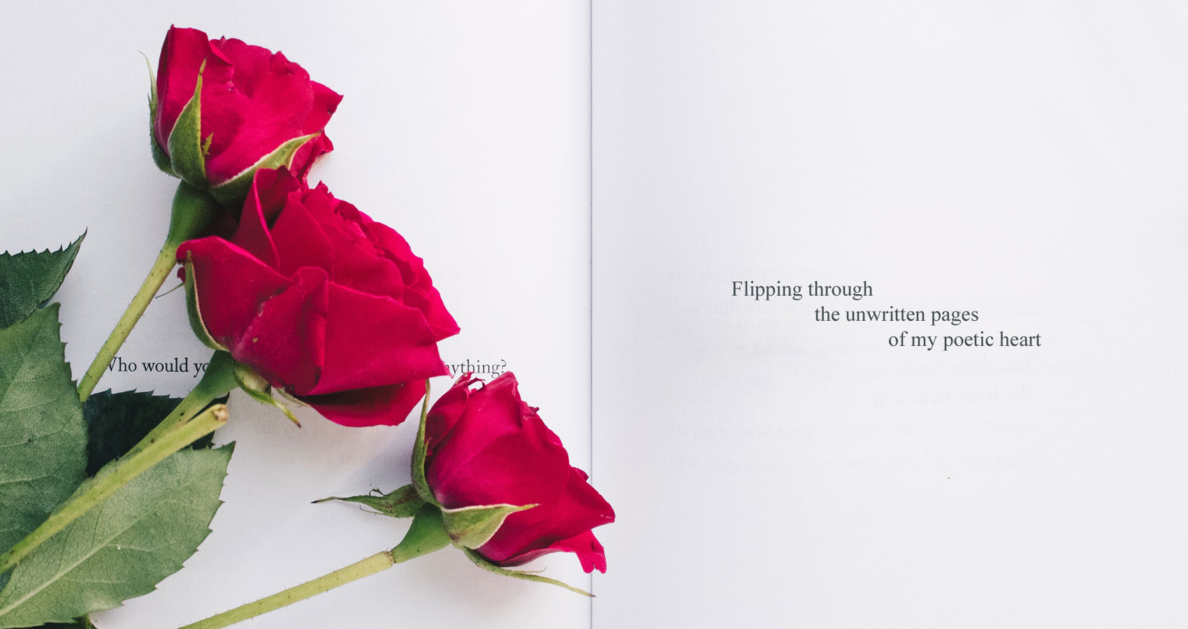 Blush, a poem written by Priya Dolma Tamang at Spillwords.com