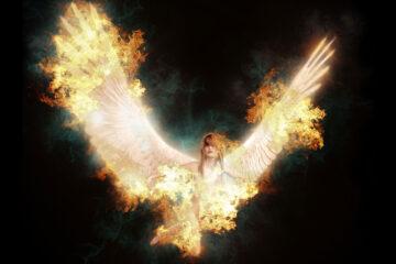 Last Angel, poetry by Adriana Morgan at Spilwords.com