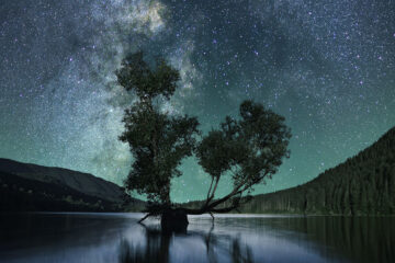 The Blue Hour, poetry written by Nisha Raviprasad at Spillwords.com