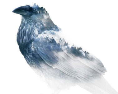 The Ravens Are Coming, poetry by Rain Alchemist at Spilwords.com